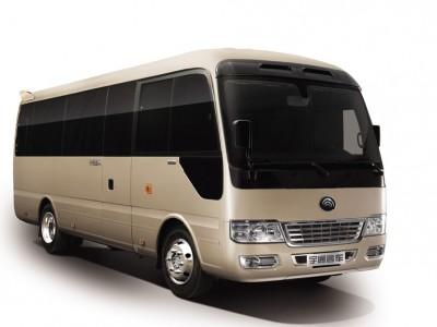 T7高档公商务车 (1)