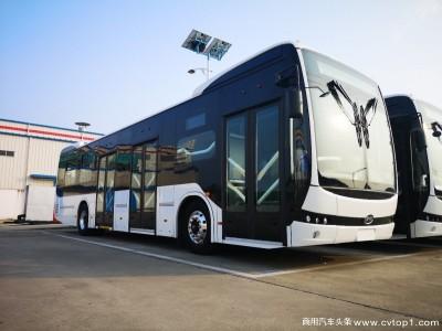 厉害了!比亚迪拿下美洲最大纯电动大巴订单,379台车辆明年交付