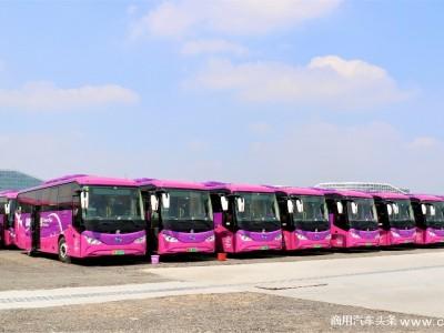 比亚迪C8投运机场快线 助力深圳打造首支纯电动机场快线车队
